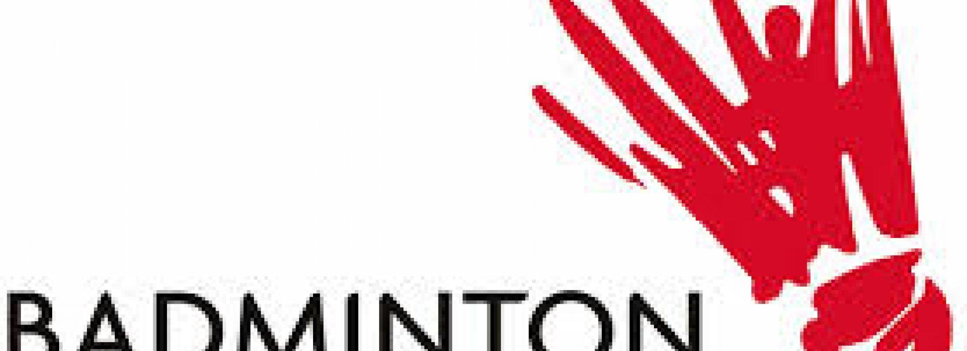 Social Badminton Competition Banner