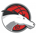 Leicester Riders Foundation Icon