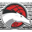Basketball Academy Head Coach Icon
