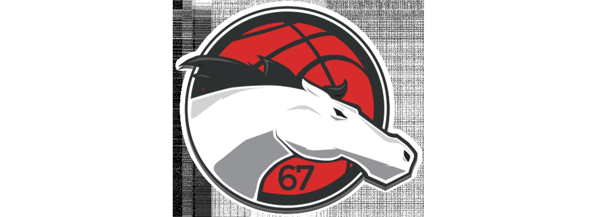 Basketball Academy Head Coach Banner