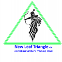 New Leaf Triangle CIC Icon