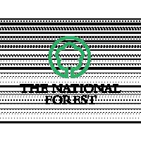 International Forest Festival - National Forest