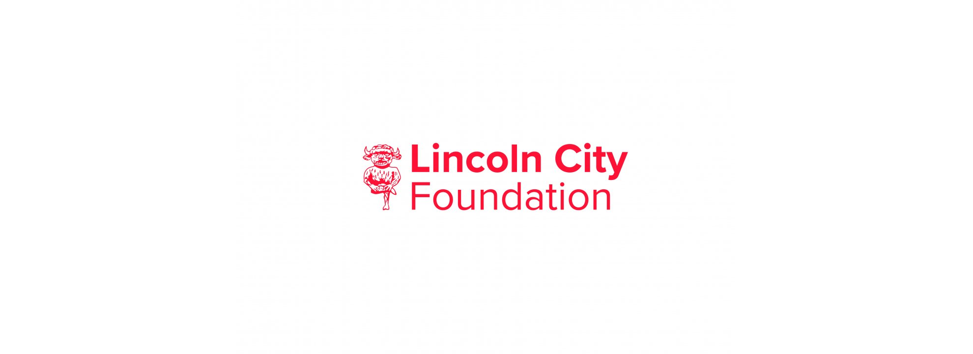 Chief Executive of Lincoln City Foundation Banner
